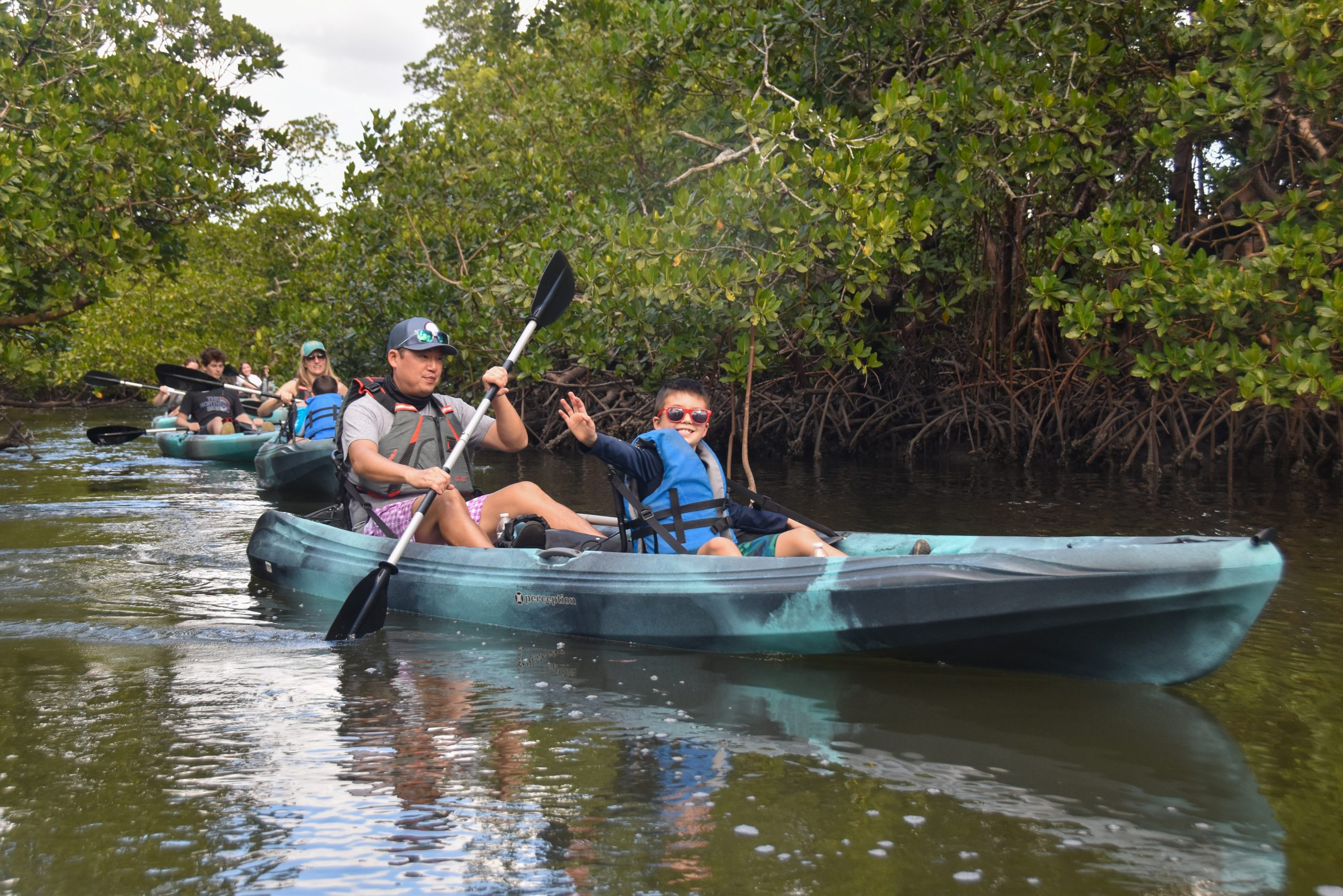 Kayak Tours   Family   Eco-Tours   Dolphins, Manatees, Birds and Wildlife   Rookery Bay Research Reserve