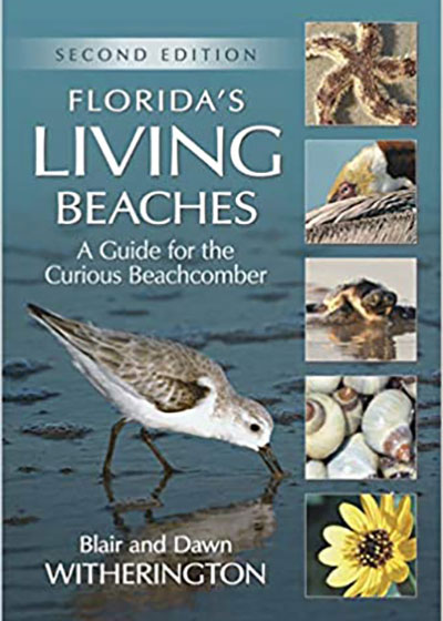 Florida's Living Beaches | Books | Nature Store | Rookery Bay Research Reserve