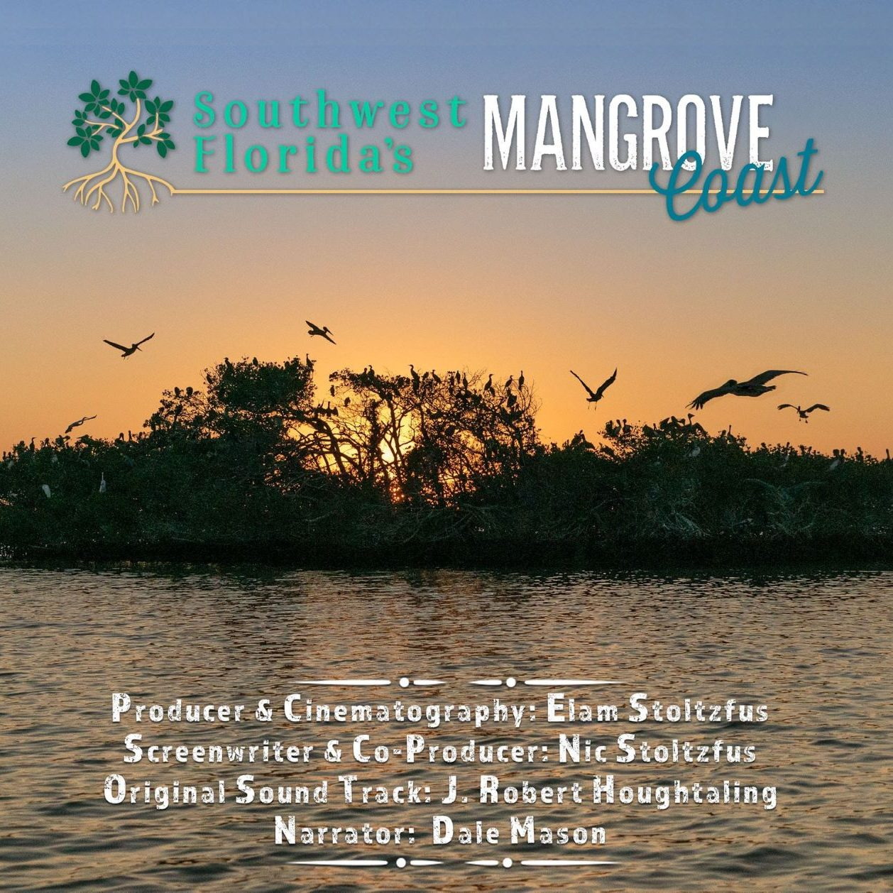 Southwest Florida's Mangrove Coast | Rookery Bay Research Reserve