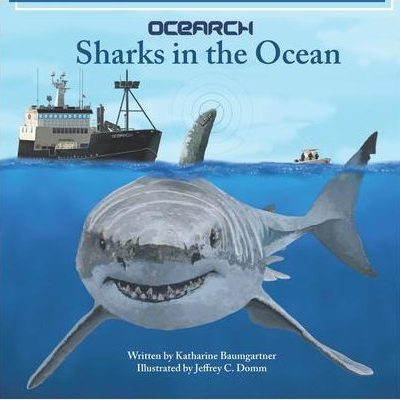 Sharks in the Ocean | Ocean Family Games | Nature Store | Children's Book | Rookery Bay Research Reserve