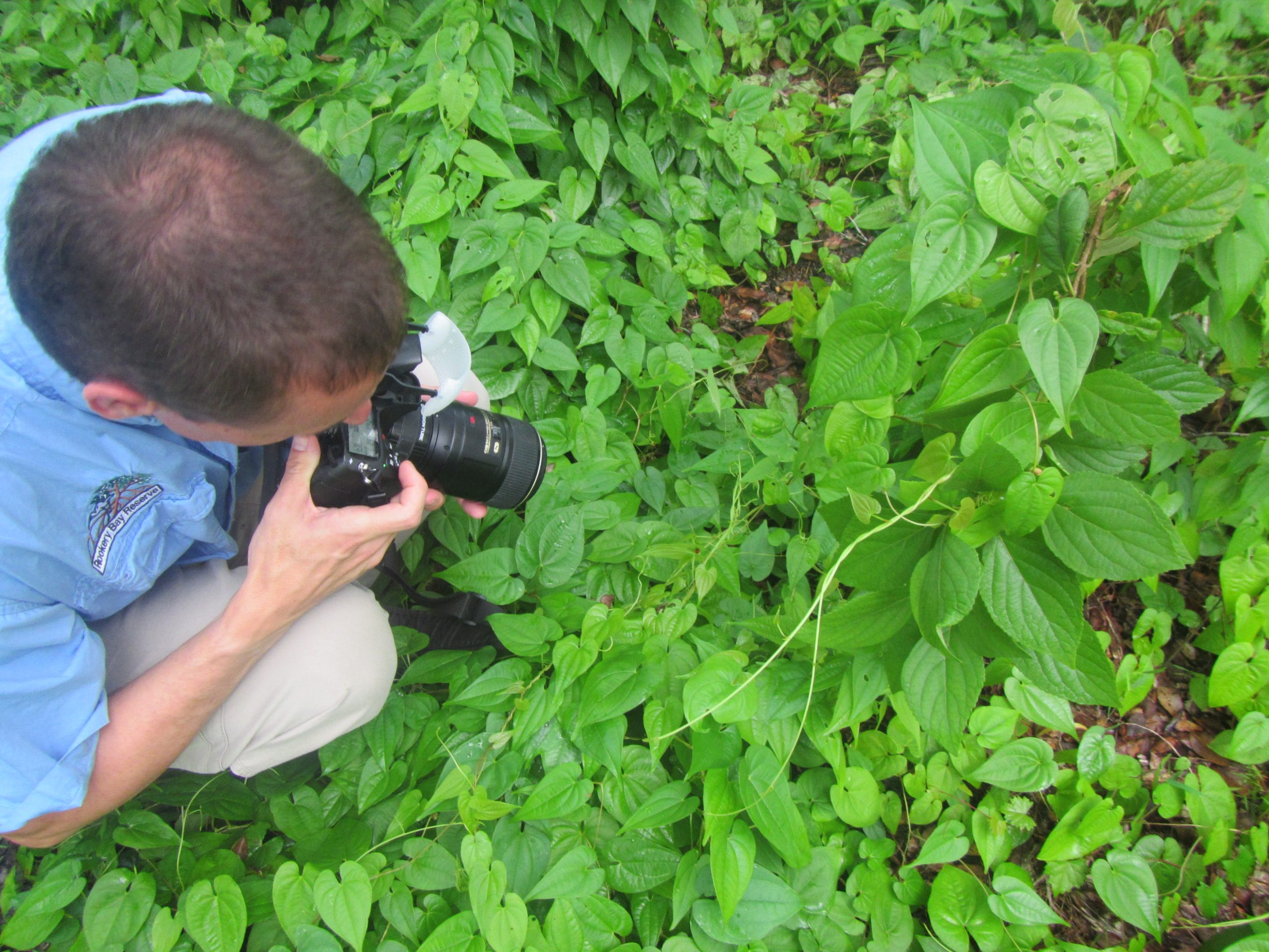 Essentials of Digital Photography | Lectures and Classes | Rookery Bay Research Reserve