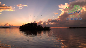 Another Sunset in Rookery Bay | FORB logo | Zoom Gallery