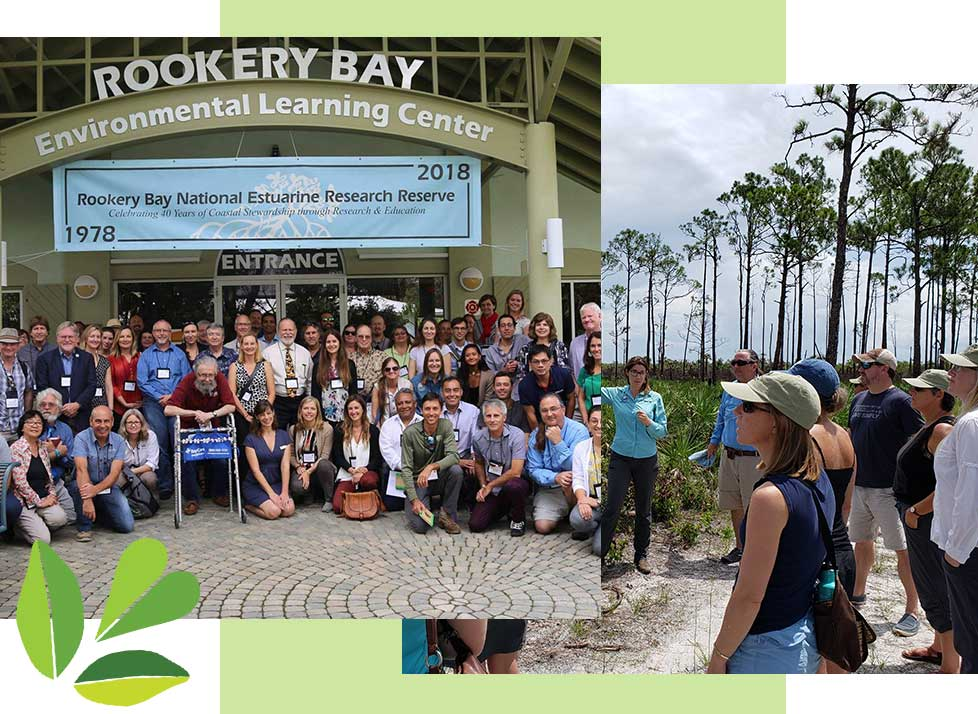 Coastal Training in Naples | Rookery Bay Research Reserve