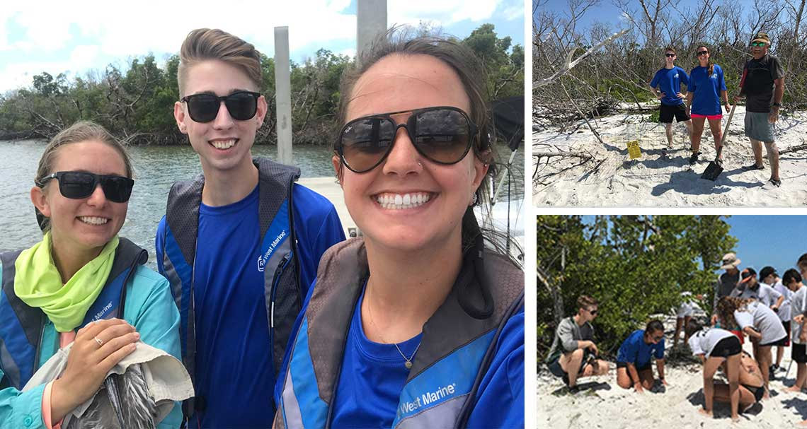 Big Turtle Nesting Numbers in Naples   Rookery Bay Research Reserve