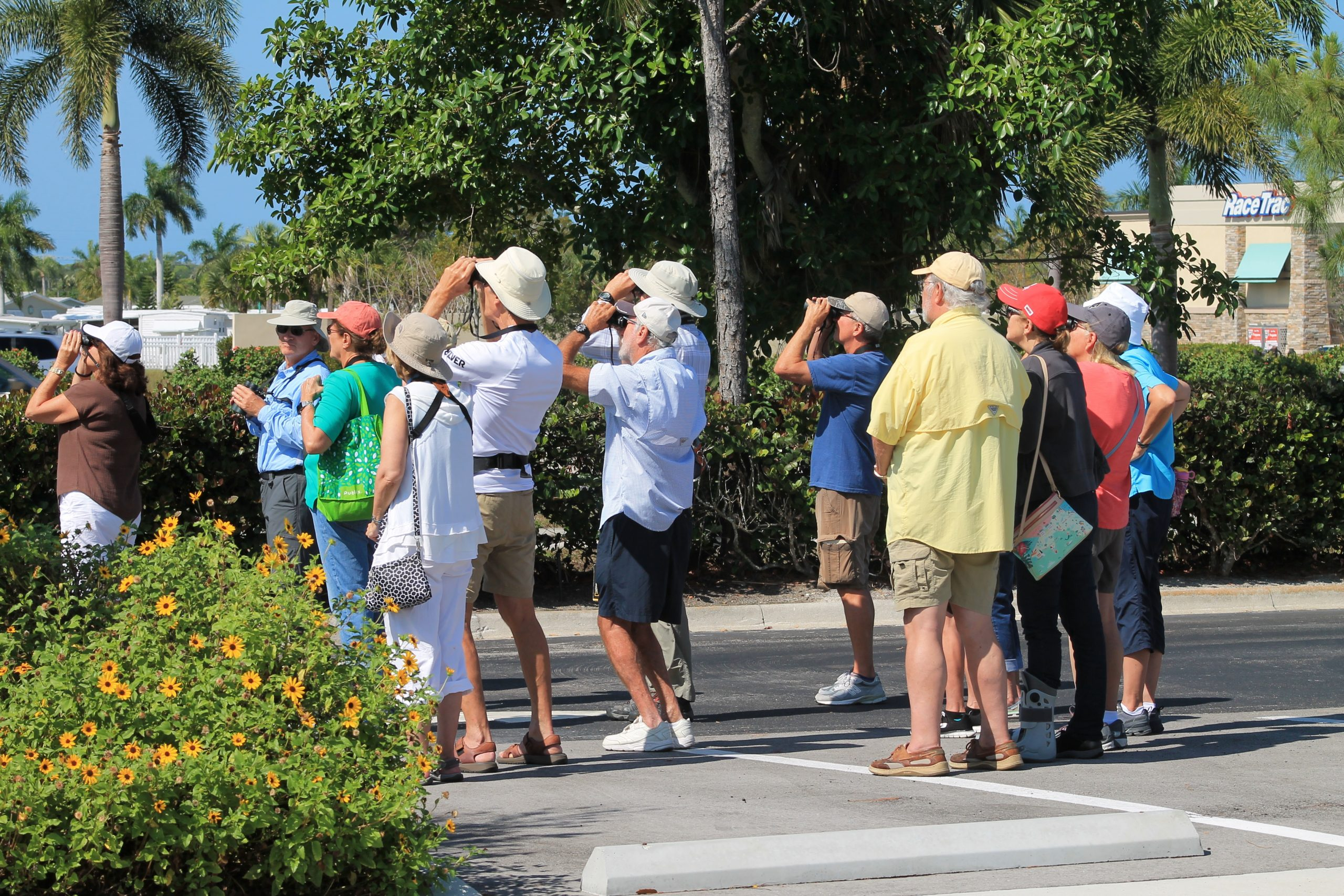 Virtual Binoculars | Lectures and Classes | Rookery Bay Research Reserve