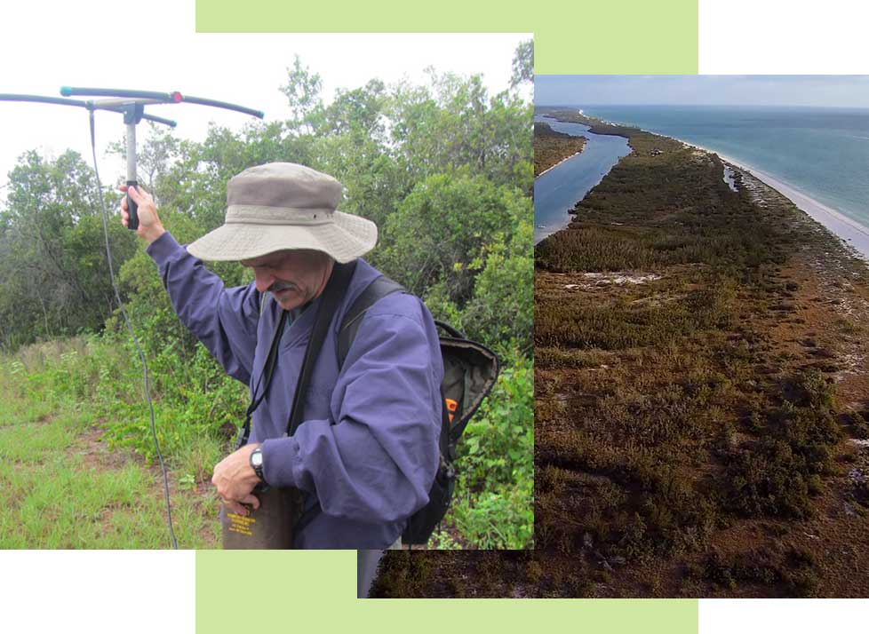 Conservation | Rookery Bay Research Reserve