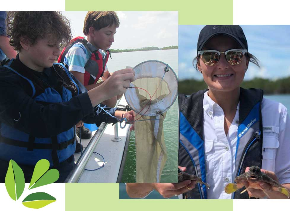 Field-based Estuarine Studies in Naples | Rookery Bay Research REserve
