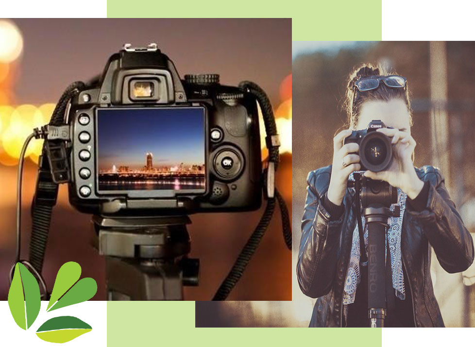 Essentials of Digital Photography | Classes at Rookery Bay National Estuarine Research Reserve