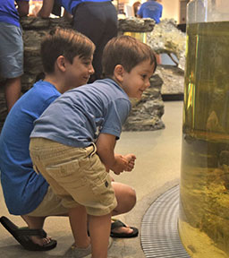 Children exploring the Environmental Learning Center at Rookery Bay Research Reserve