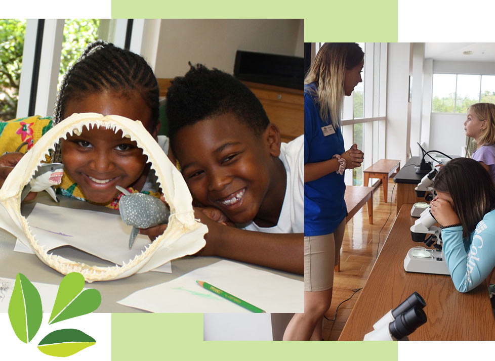 Kids having a blast at Kids Free Fridays at Rookery Bay | National Estuarine Research Reserve