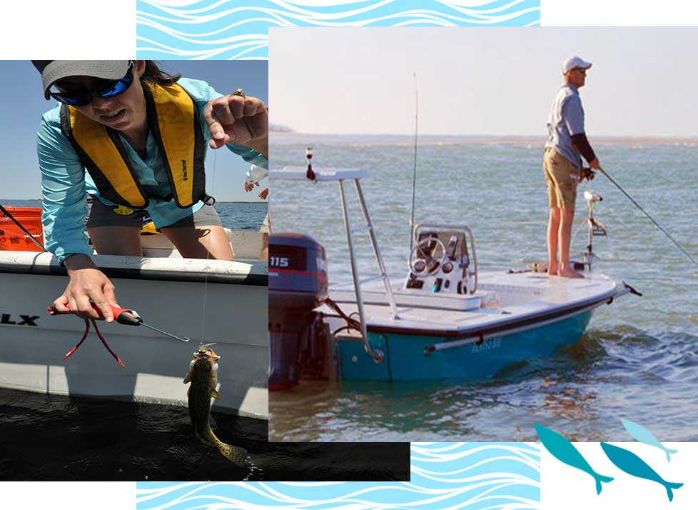 Naples, Florida Fishing at Rookery Bay | National Estuarine Research Reserve