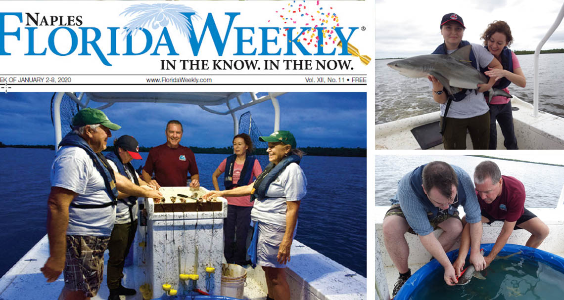 Rookery Bay shark research article in Florida Weekly