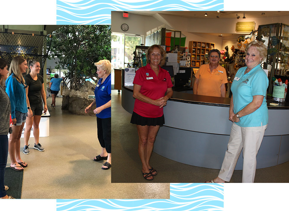 Front Desk Greeter Volunteer | Environmental Learning Center | Rookery Bay Research Reserve