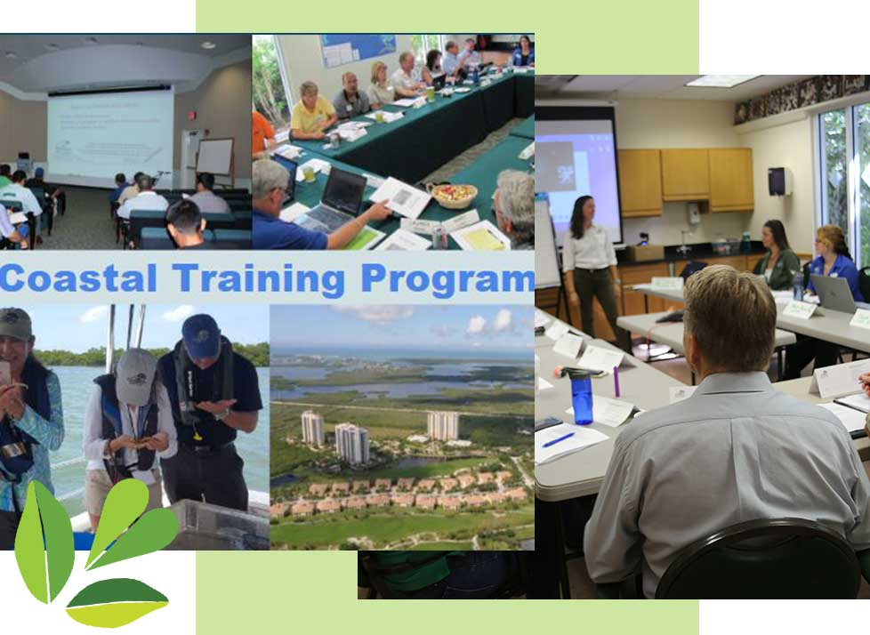 Coastal Training Program in Naples | Rookery Bay Research Reserve
