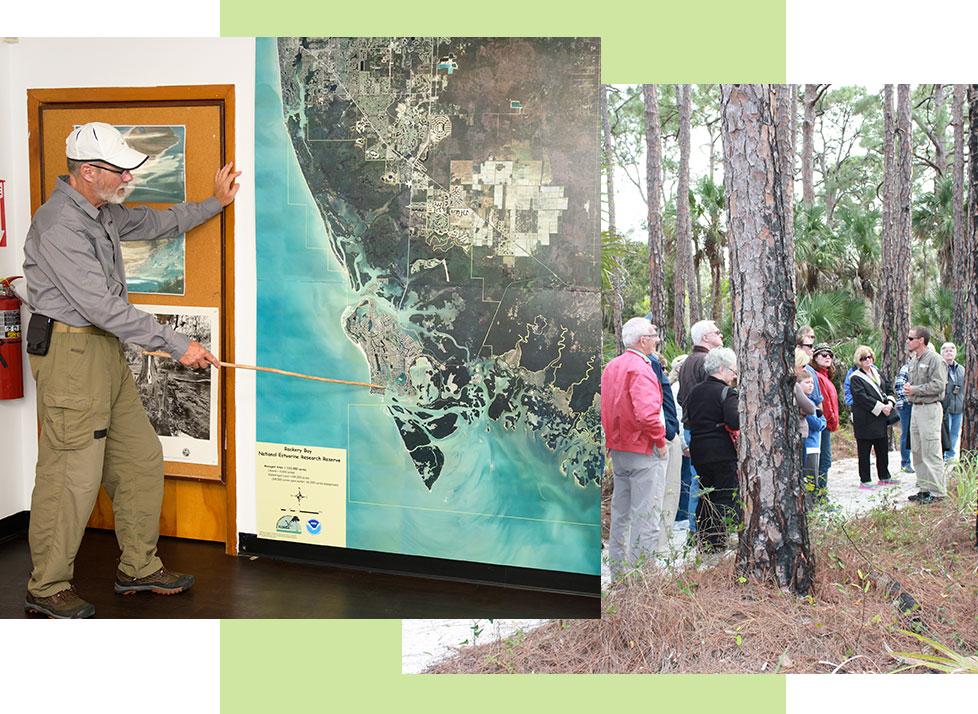 Interpreter Volunteer | Rookery Bay Research Reserve