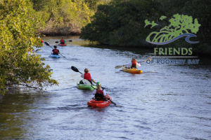 Kayakers | Zoom Gallery | Family Activities | Rookery Bay Research Reserve