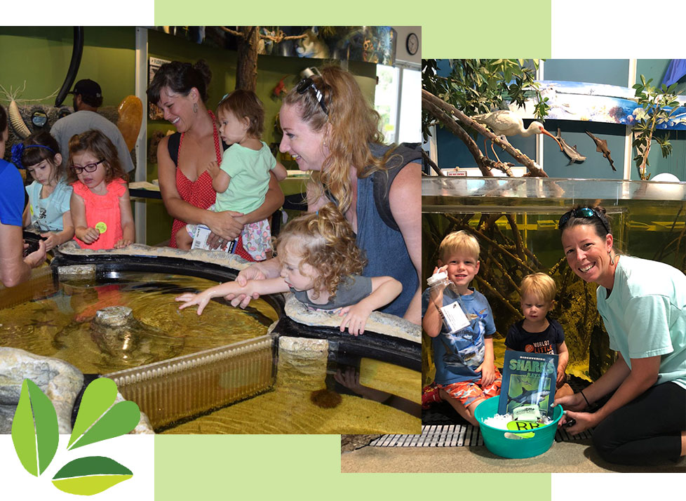 Families enjoying the many events for Kids & Families at Rookery Bay | National Estuarine Research Reserve