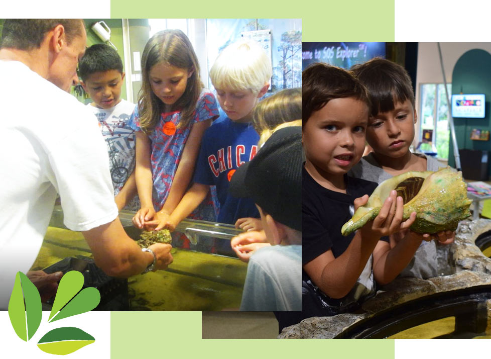 Kids learning at Science Saturdays at Rookery Bay | National Estuarine Research Reserve