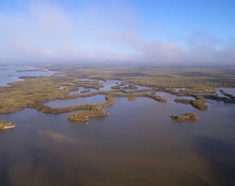 Drone Image of Rookery Bay Research Reserve | National Estuarine Research Reserve