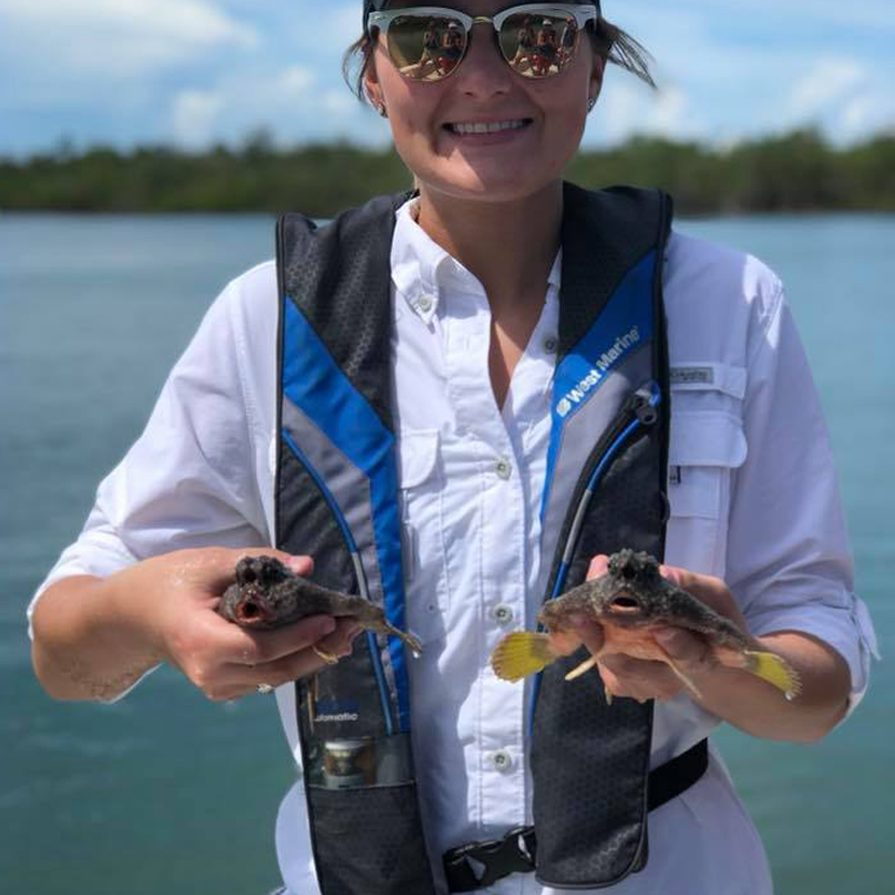 Summer Institute for Marine Science   Rookery Bay Research Reserve