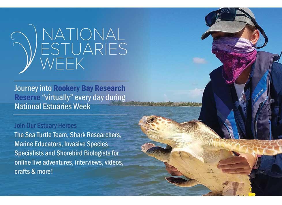 national estuaries week   rookery bay research reserve