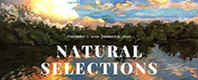 Natural Selections | Mega Menu | Art Gallery Receptions and Exhibitions | Rookery Bay Research Reserve
