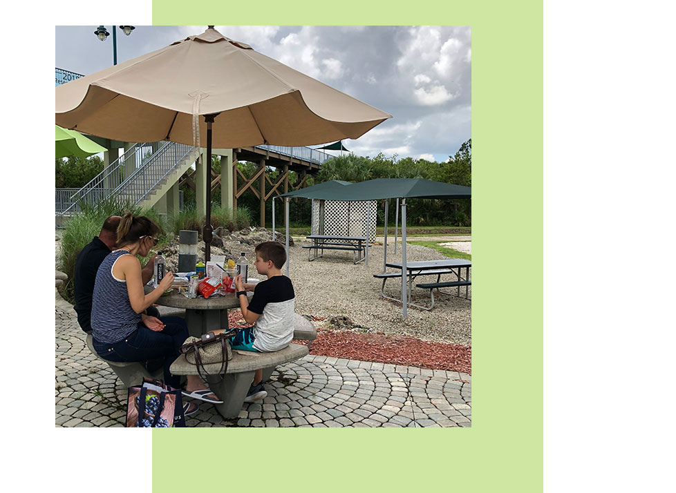 Picnic Areas at Rookery Bay Environmental Learning Center | Rookery Bay Research Reserve