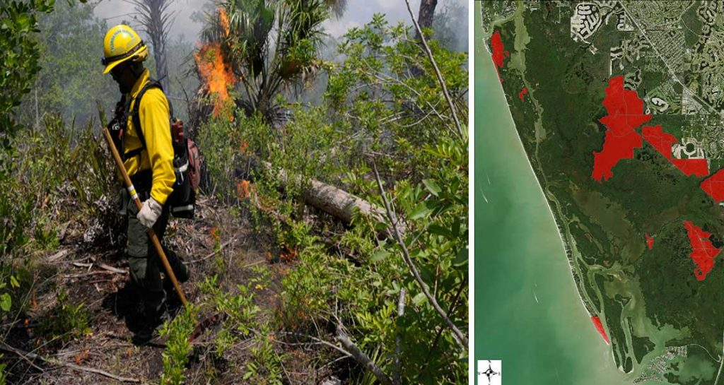 Prescribed Burns in Naples | Rookery Bay Research Reserve