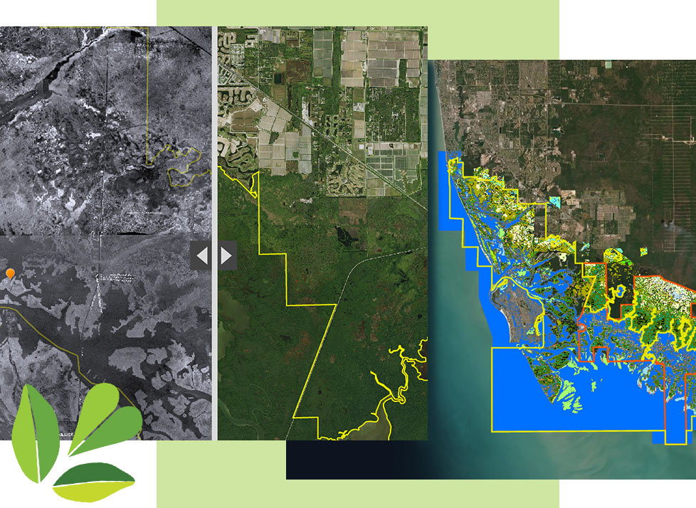 GIS Mapping at Rookery Bay | National Estuarine Research Reserve