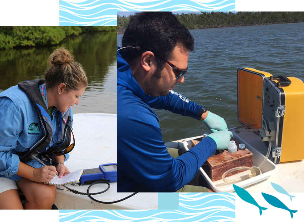 Reserve Monitoring at Rookery Bay | National Estuarine Research Reserve