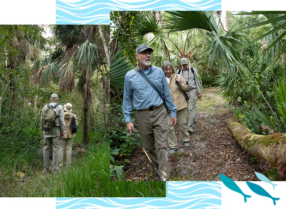 Nature Trails at Rookery Bay | National Estuarine Research Reserve