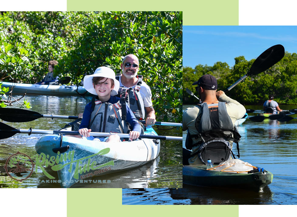 Rising Tide offers Guided Kayak Tours of Rookery Bay | National Estuarine Research Reserve