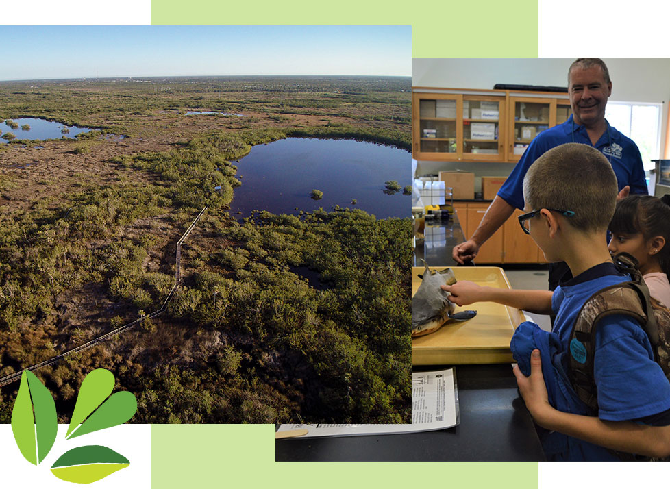 Explore Rookery Bay Land and Environment Learning Center | Rookery Bay National Estuarine Research Reserve