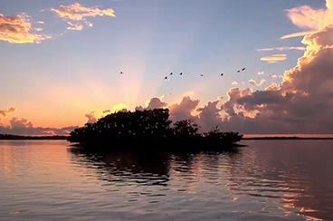 Rookery Bay at Sunrise | Rookery Bay National Estuarine Research Reserve