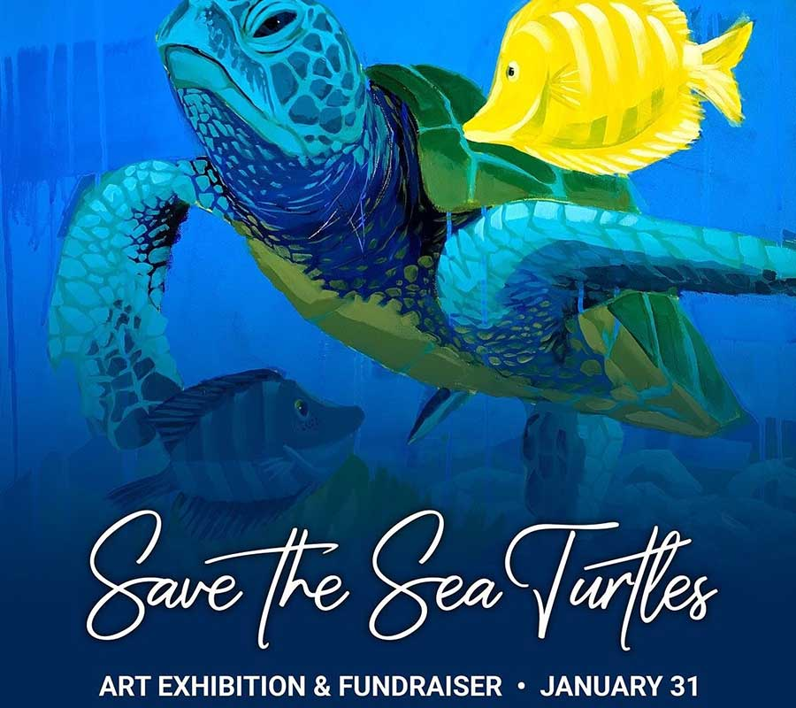 Sea Turtle Art Exhibit | Rookery Bay Research Reserve