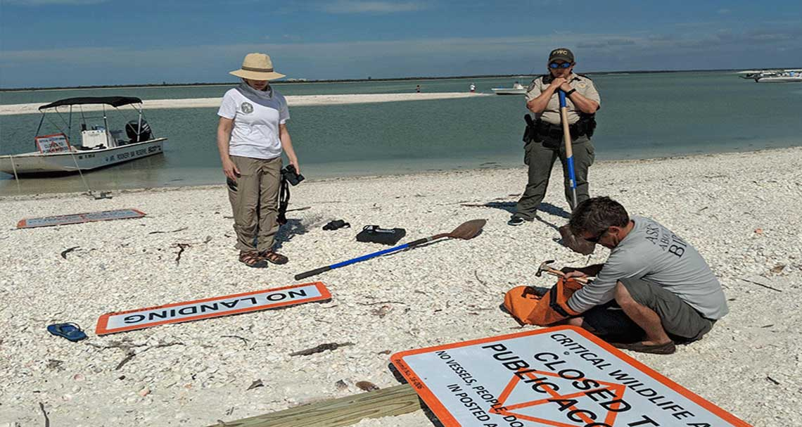 Second Chance Sandbar in Naples | Rookery Bay Research Reserve