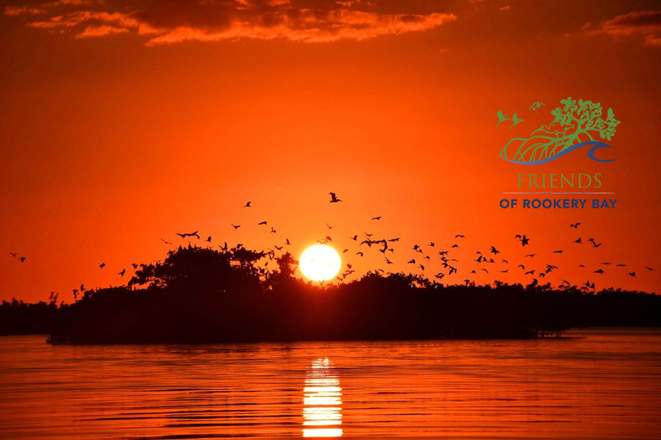 FORB logo | Sunset in Rookery Bay Research Reserve | Zoom Gallery