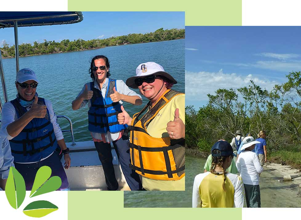 Teachers on the Estuary in Naples | Rookery Bay Research Reserve