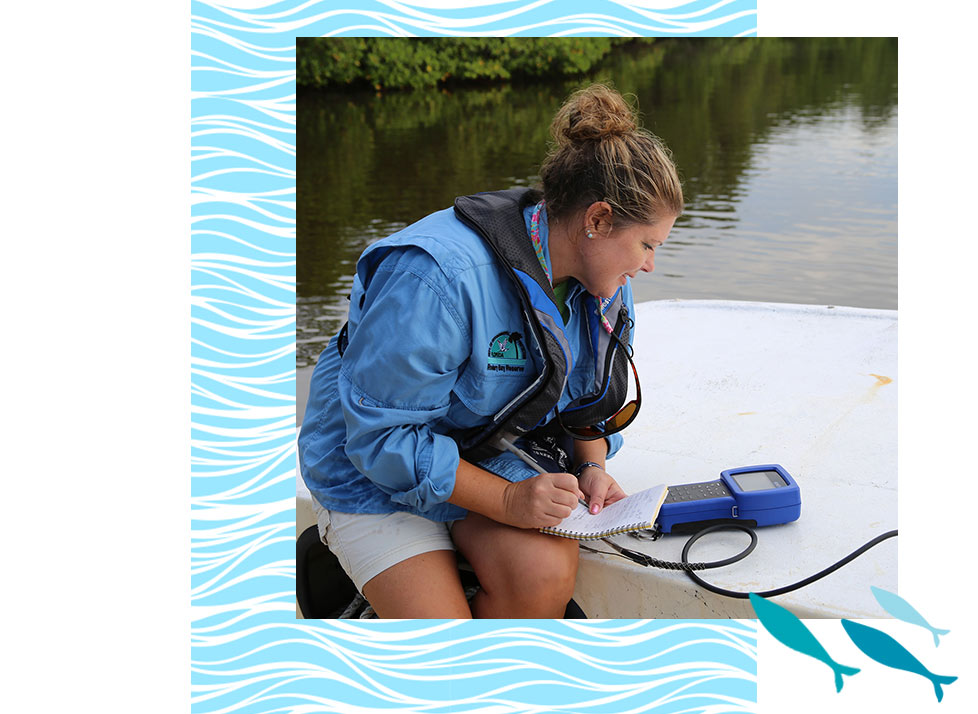 Virtual Education | Water Quality | Rookery Bay Research Reserve