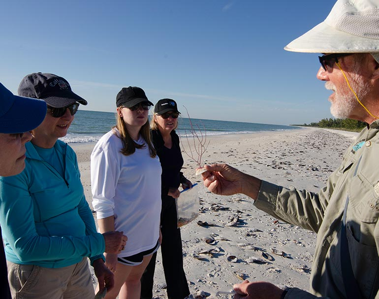 Educational Boat Tours at Rookery Bay | National Estuarine Research Reserve