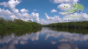Water and Mangroves | FORB logo | Zoom Gallery