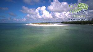 Water in Rookery Bay | FORB logo | Zoom Gallery